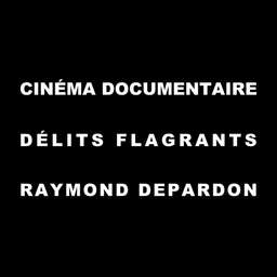 Le cinéma documentaire - Délits flagrants de Raymond Depardon